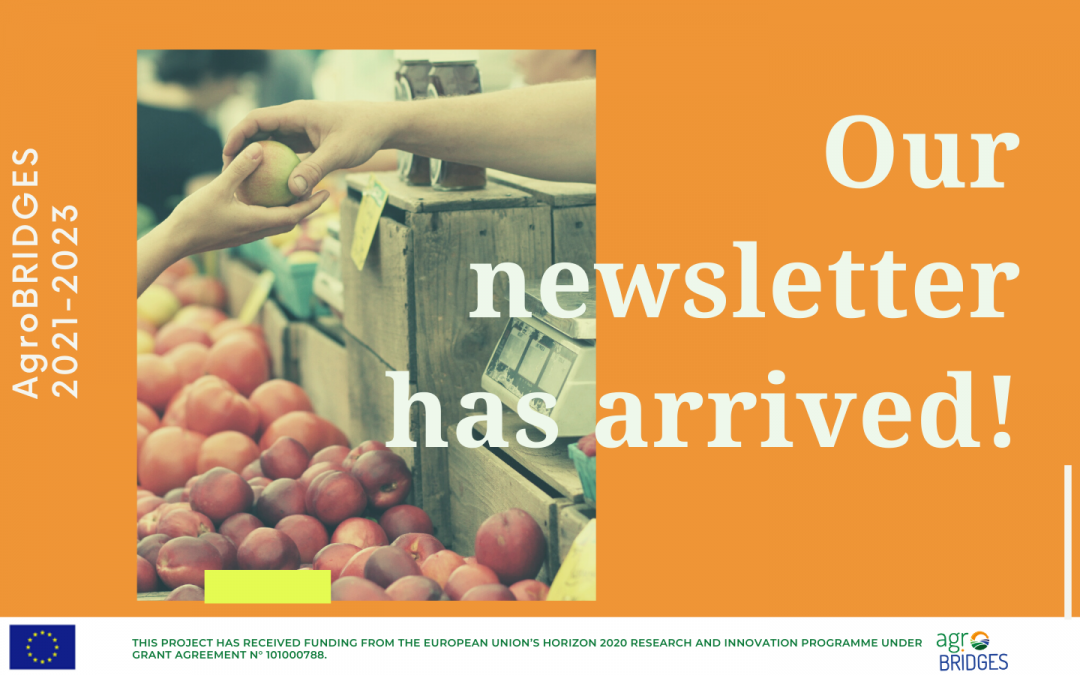 Our newsletter has arrived!