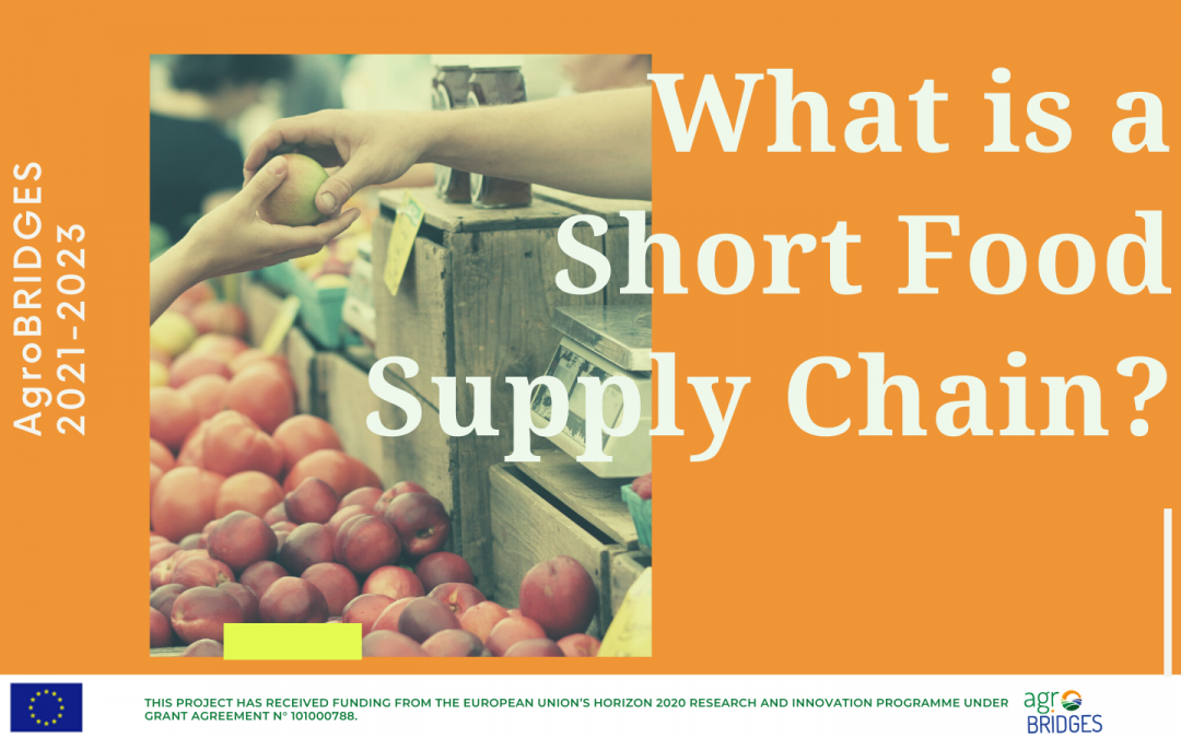 What is a short food supply chain?